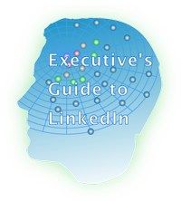 Executive's Guide to LinkedIn logo