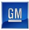 Retrofitting GM, the Quintessential Industrial Economy Enterprise