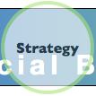 Social Business Life Cycle: Strategy