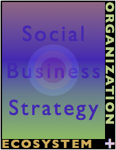 The Social Business Organization Audit and Social Business Strategy
