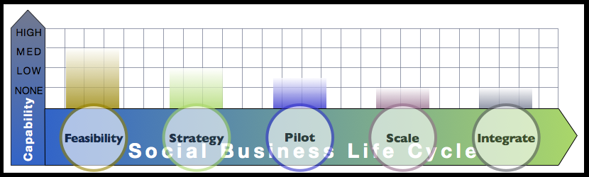 Analyst Report: Advisory & Services Firm Social Business Adoption Capabilities