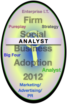 Analyst Report: Advisory & Services Firm Social Business Adoption 2012