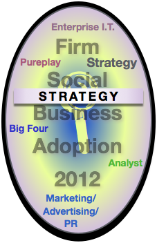 Strategy Report: Advisory & Services Firm Social Business Adoption 2012