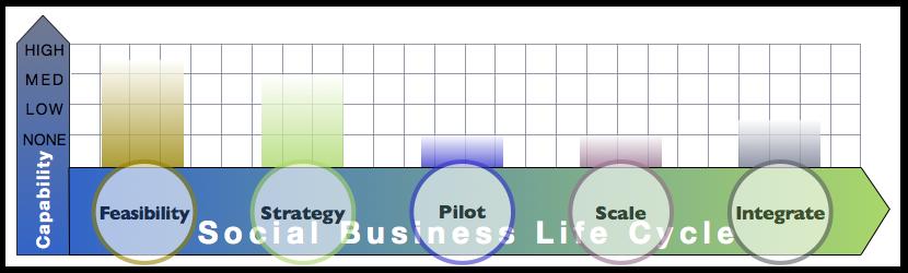 Big Four Firm Report: Advisory & Services Firm Social Business Adoption Capabilities