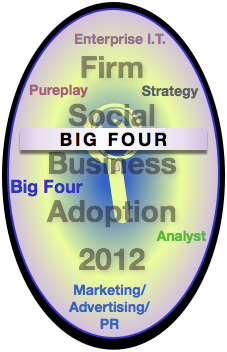 Big Four Firm Report: Advisory & Services Firm Social Business Adoption 2012