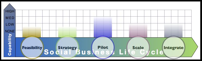 Enterprise I.T. Report: Advisory & Services Firm Social Business Adoption Capabilities