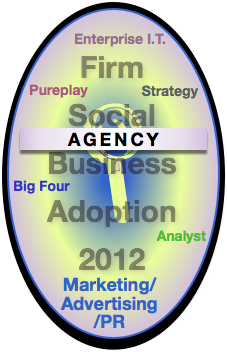 Agency Report: Advisory & Services Firm Social Business Adoption 2012