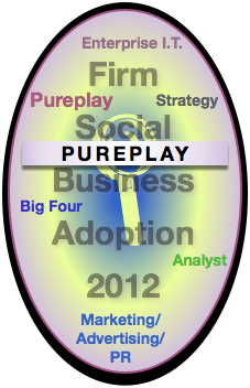 Pureplay Report: Advisory & Services Firm Social Business Adoption 2012