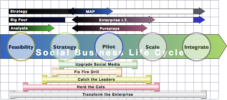 Social Business Life Cycle & Client Use Case: Firm Social Business Adoption 2012: advisors & use cases
