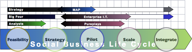 Social Business Life Cycle & Firm Category: Firm Social Business Adoption 2012