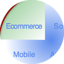 chief digital officer & transformation:  ecommerce