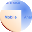 chief digital officer & transformation: mobile