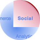 chief digital officer & transformation: social business