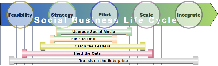 Enterprise Social Business Life Cycle