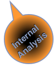 Social Business Double Value Proposition: Internal Analysis [Organization Audit]