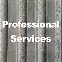 Professional services social business opportunities