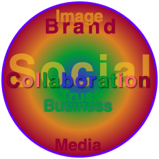 Using Social Media and Social Business Together to Evolve Experience: Integrating Social Business & Social Media