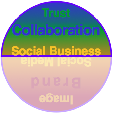 Using Social Media and Social Business Together to Evolve Experience: Social Business