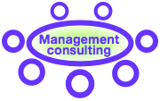 Social Business Management Consulting Widget