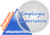 The Employee Engagement Fallacy: Employee Experience View of Organization