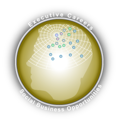 Executive Careers and Social Business