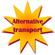 Social Empowerment Cohort: alternative transport